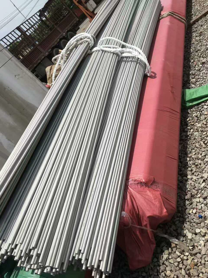 High Quality TP446 Stainless Steel Seamless Tube /  Stainless Steel Pipe